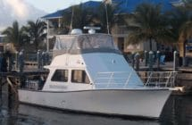 thresher at blue marlin cove