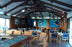 bimini big game club restaurant