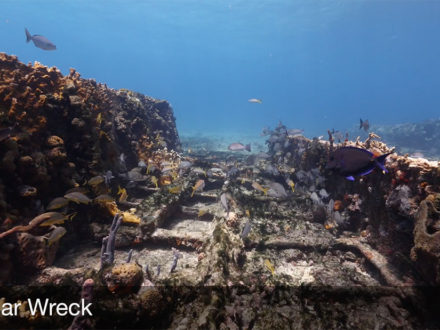 shipwreck sugar wreck grand bahama