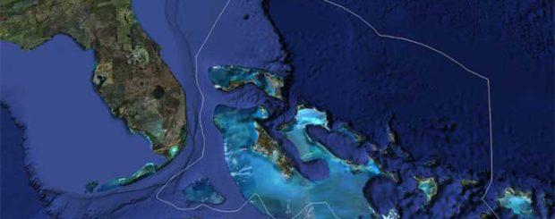 bahamas shark sanctuary