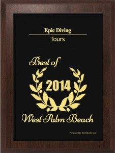 Epic Diving wins 2014 Best Tour Operator Award