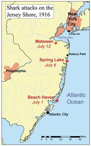 1916 nj shark attack map