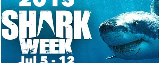 discovery channel shark week