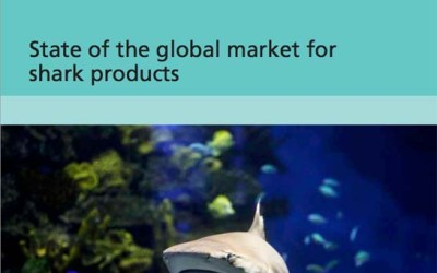 state of the global market for shark products