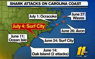 north carolina shark attacks 2015