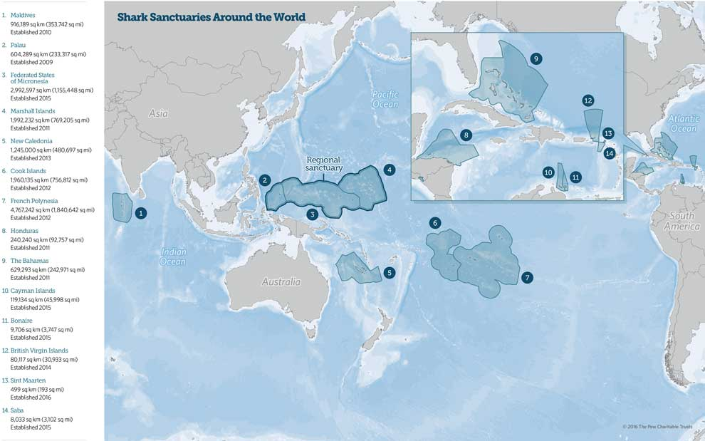 global shark sanctuaries map