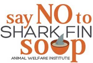Restaurants Serving Shark Fin Soup