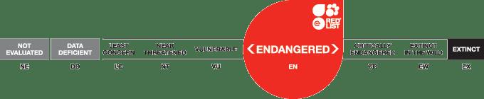 IUCN threat categories endangered
