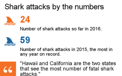 2016 shark attack file