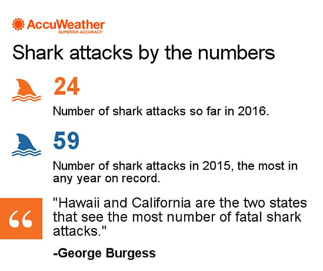 2016 shark attacks