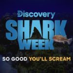 shark week 2019 discovery channel