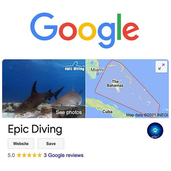 review epic diving